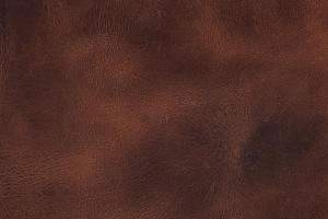 Pampas Tan Leather Tile